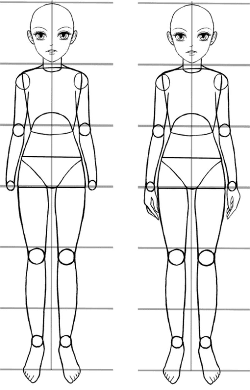 anime cuerpo dibujar pasos partes 3