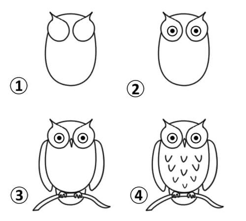 buho lechuzo tecolote dibujos fáciles de animales para hacer a lápiz con niños paso a paso