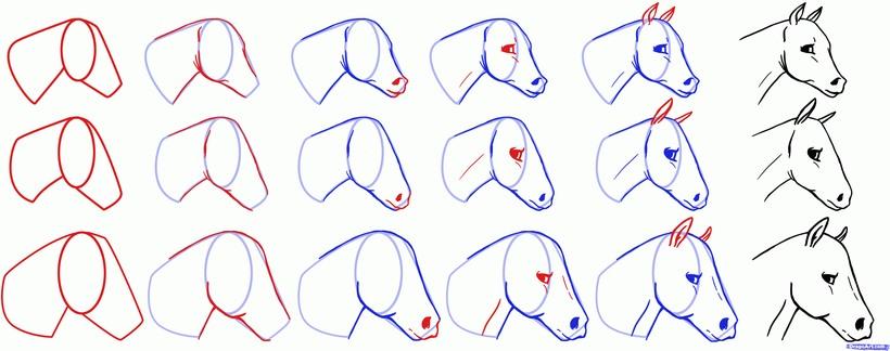 cabeza de caballo caballitos dibujos fáciles a lápiz paso a paso