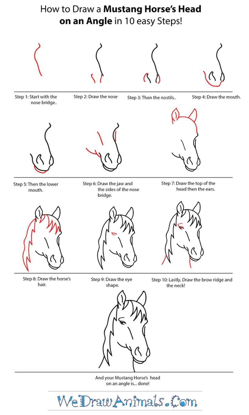 dibujos fáciles de cabeza de caballo a lápiz paso a paso realista