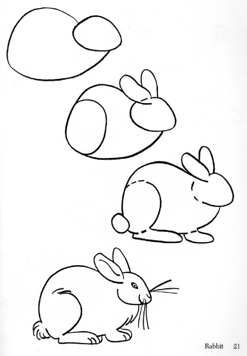 conejo realista dibujos fáciles de animales para hacer a lápiz con niños paso a paso
