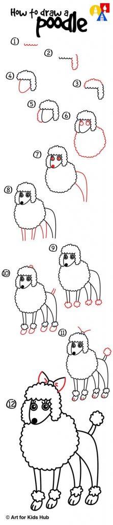 dibujo fácil perro caniche paso a paso a lápiz para colorear