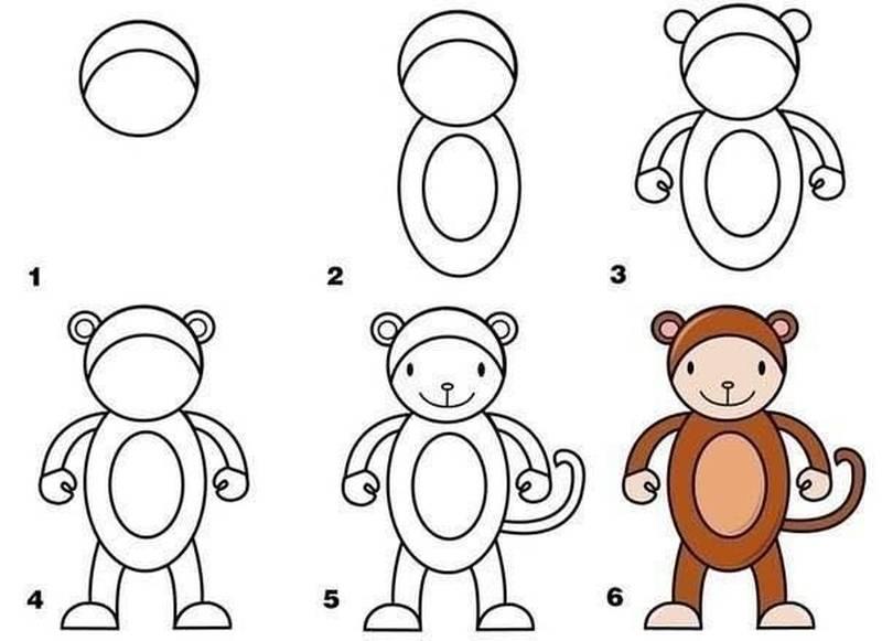 dibujo fácil de animal salvaje a lápiz paso a paso mono monito