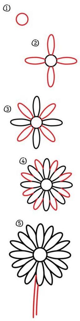 dibujos fáciles de flores de margarita sencilla paso a paso