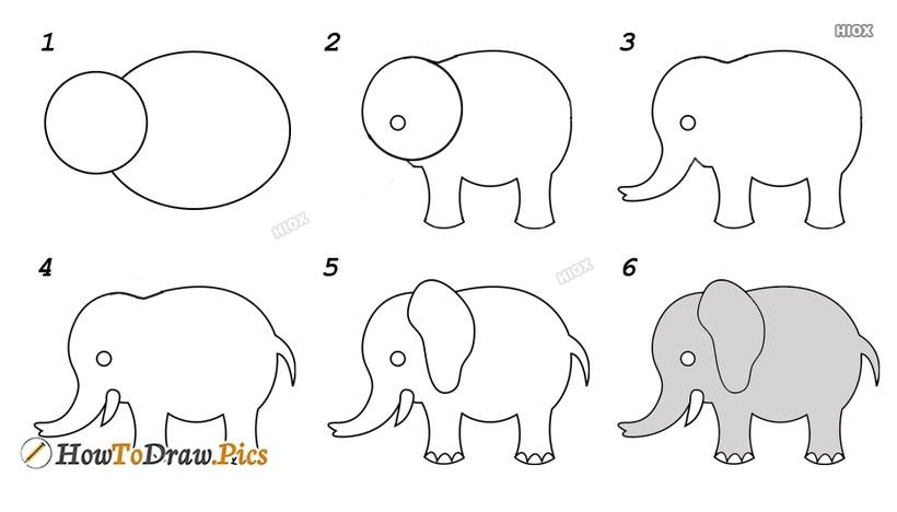 dibujos fáciles de elefantes a lápiz paso a paso para niños elefante adulto colmillos