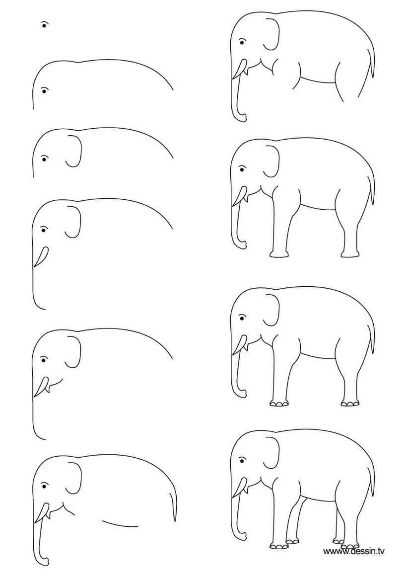 dibujos fáciles de elefantes a lápiz paso a paso para niños elefante simple