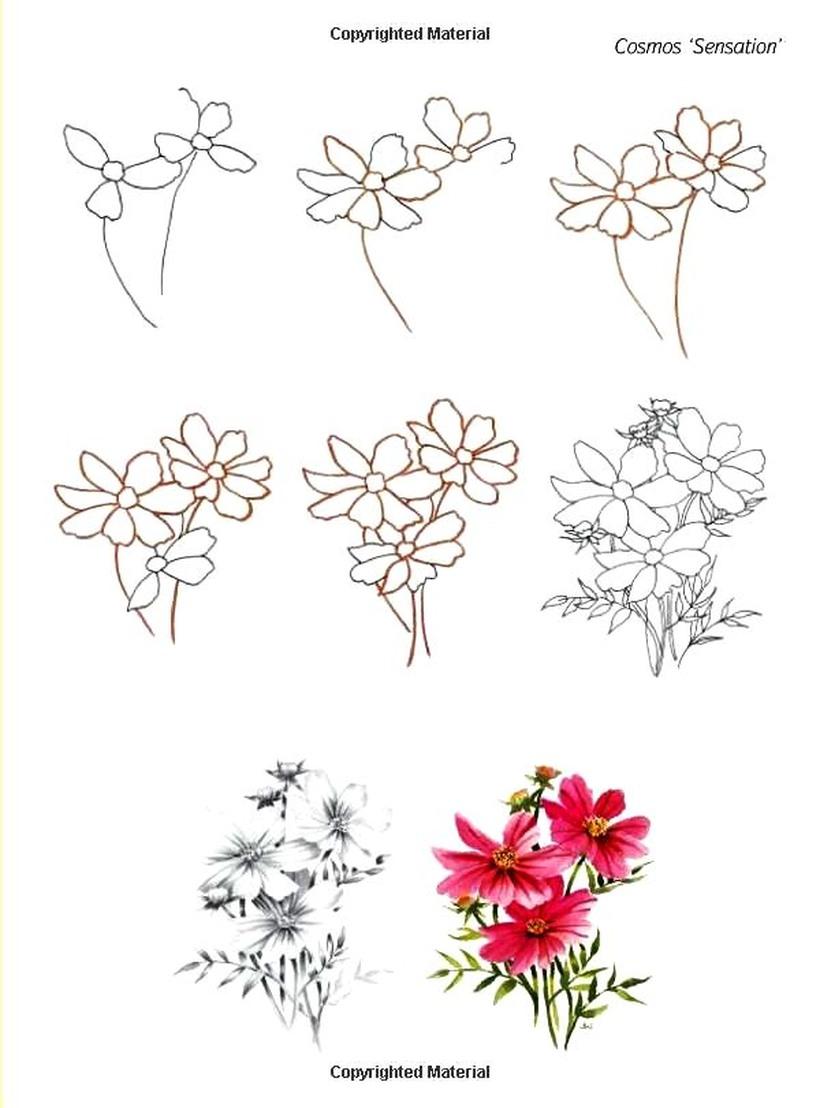 flor dibujos faciles de ramos de flores