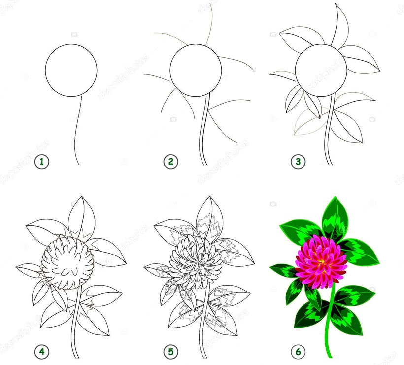 flor con hojas dibujos faciles de flores paso a paso para colorear