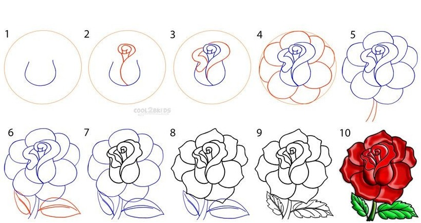 flor rosas dibujos fáciles de rosa roja para pintar o colorear rojo