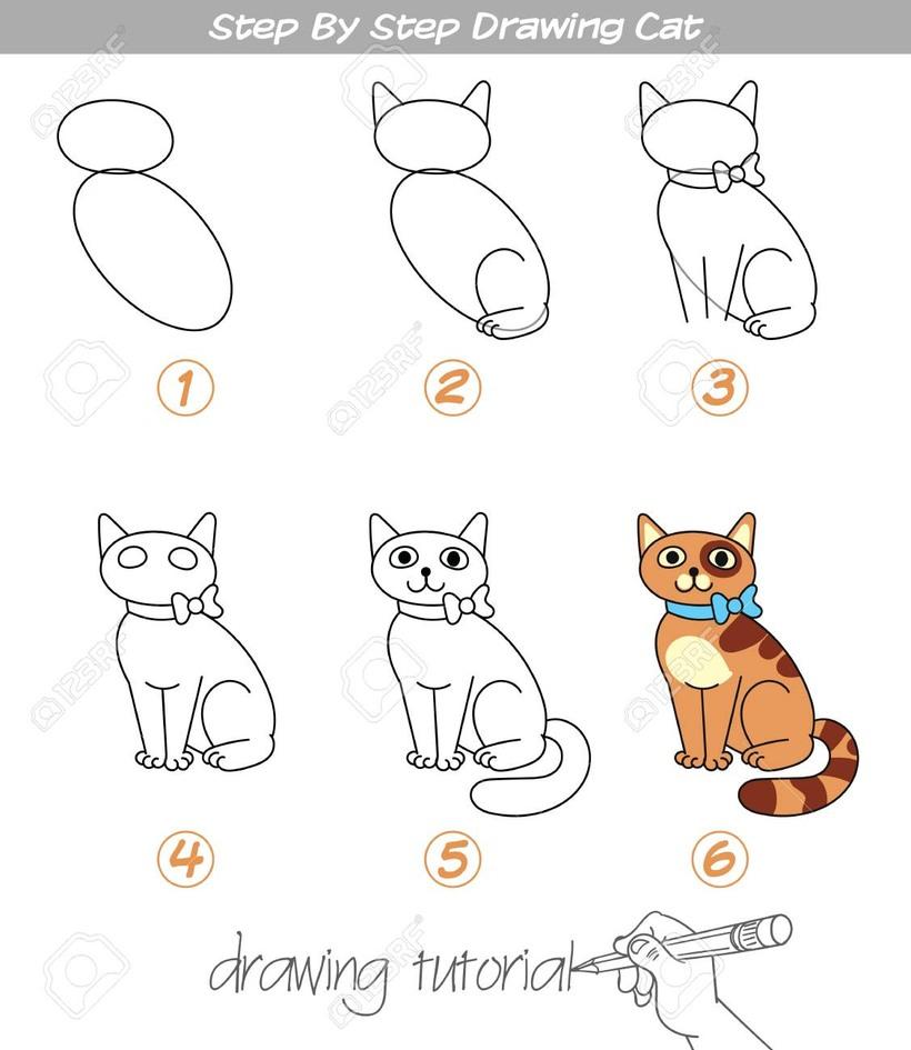 gatos gato dibujos faciles guía paso a paso para niños colorear a lápiz