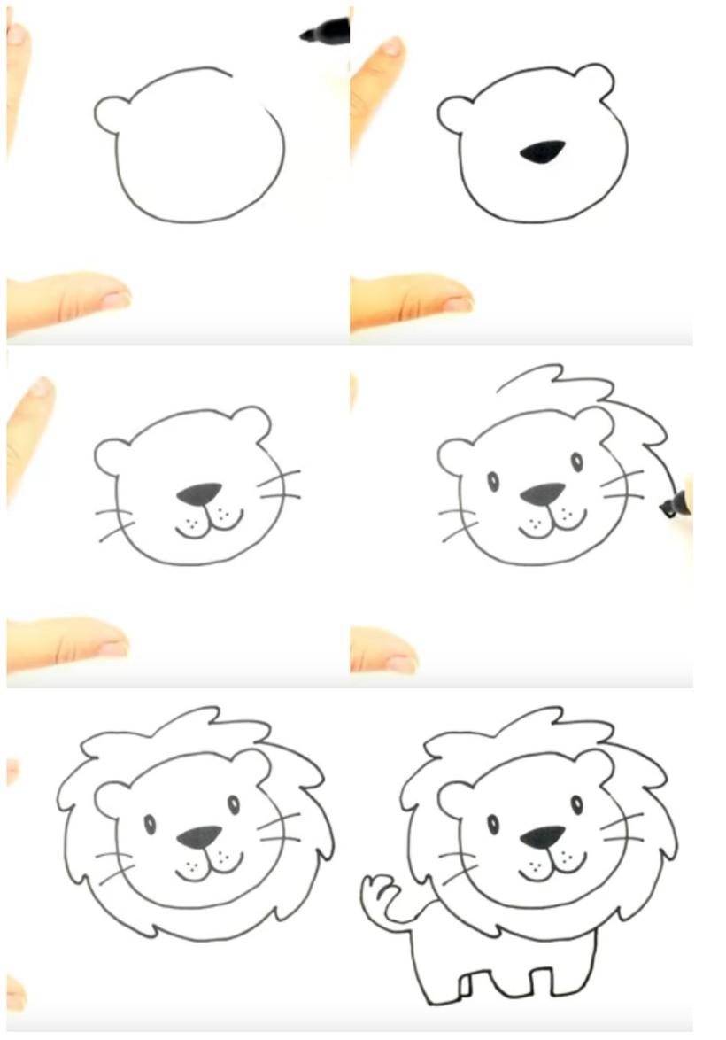leon leones dibujos faciles 2