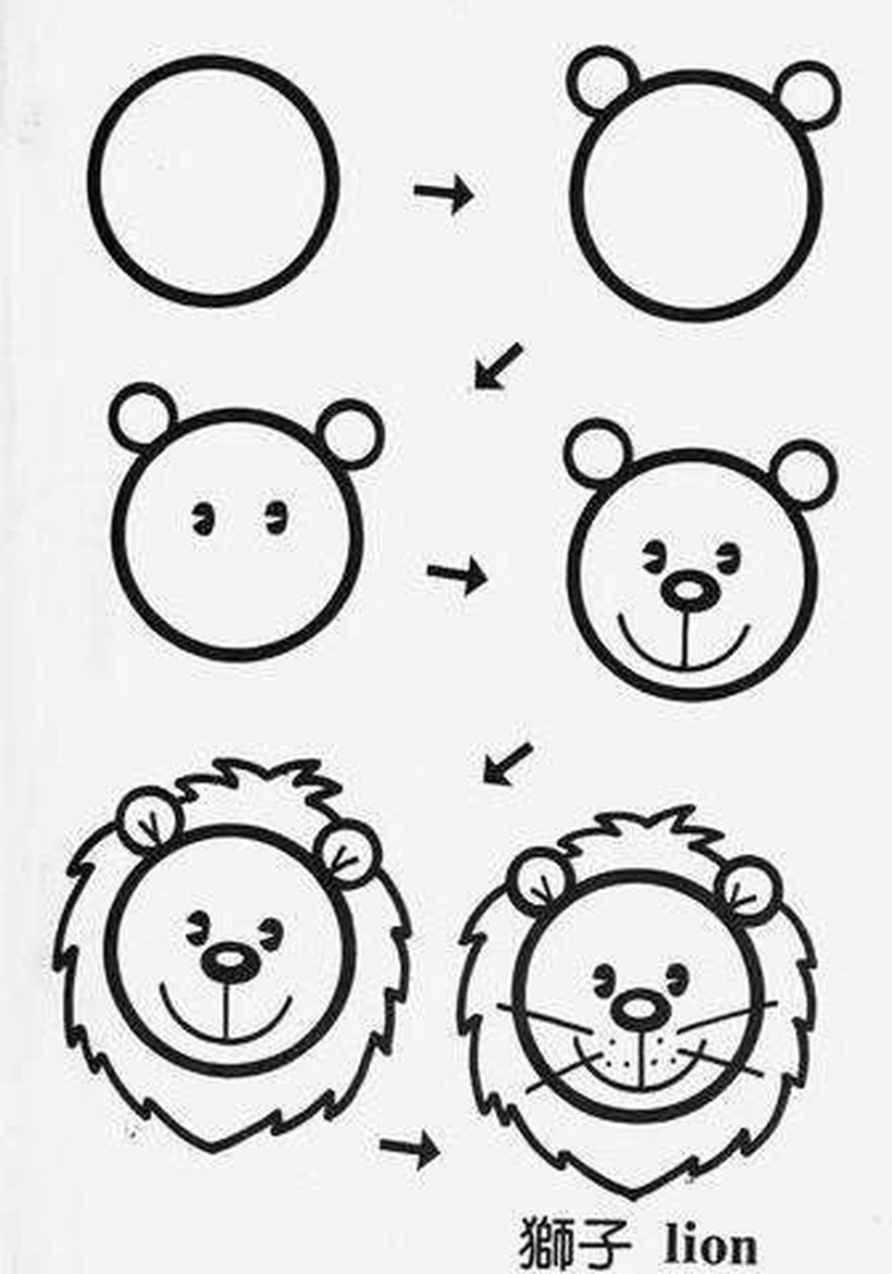 leon leones dibujos faciles 3
