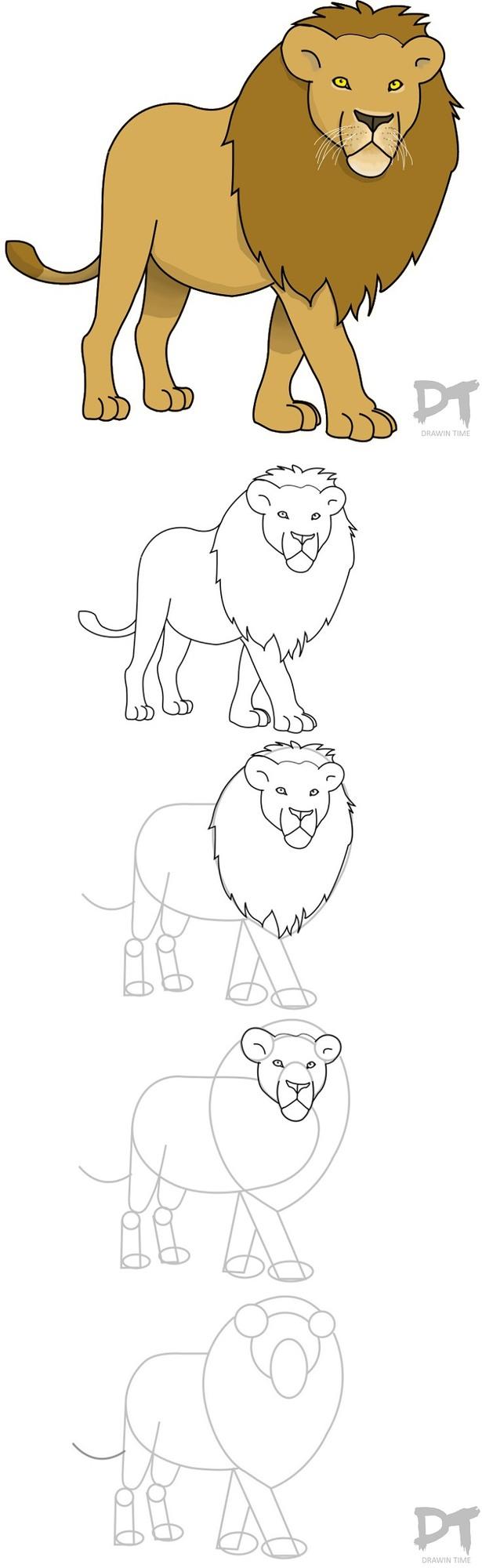 leon leones dibujos faciles 5