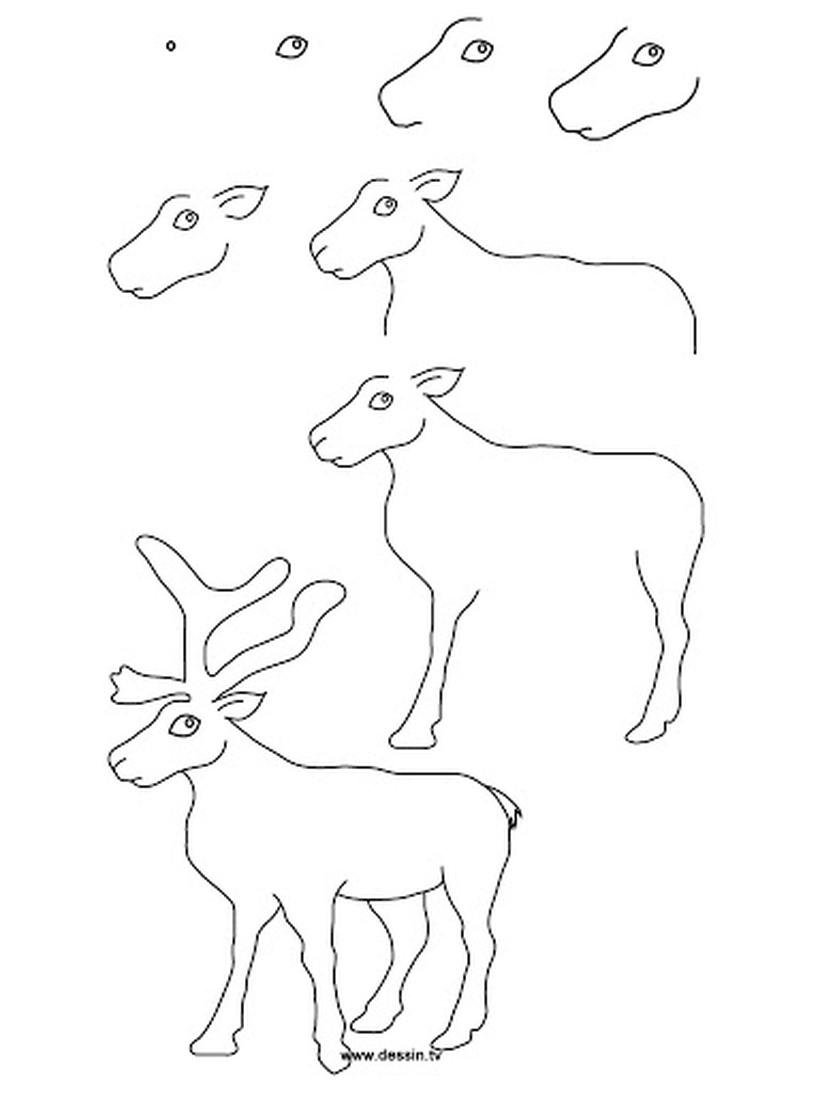 dibujos fáciles de renos de navidad  paso a paso a lápiz reno de papá noel santa claus viejito pascuero