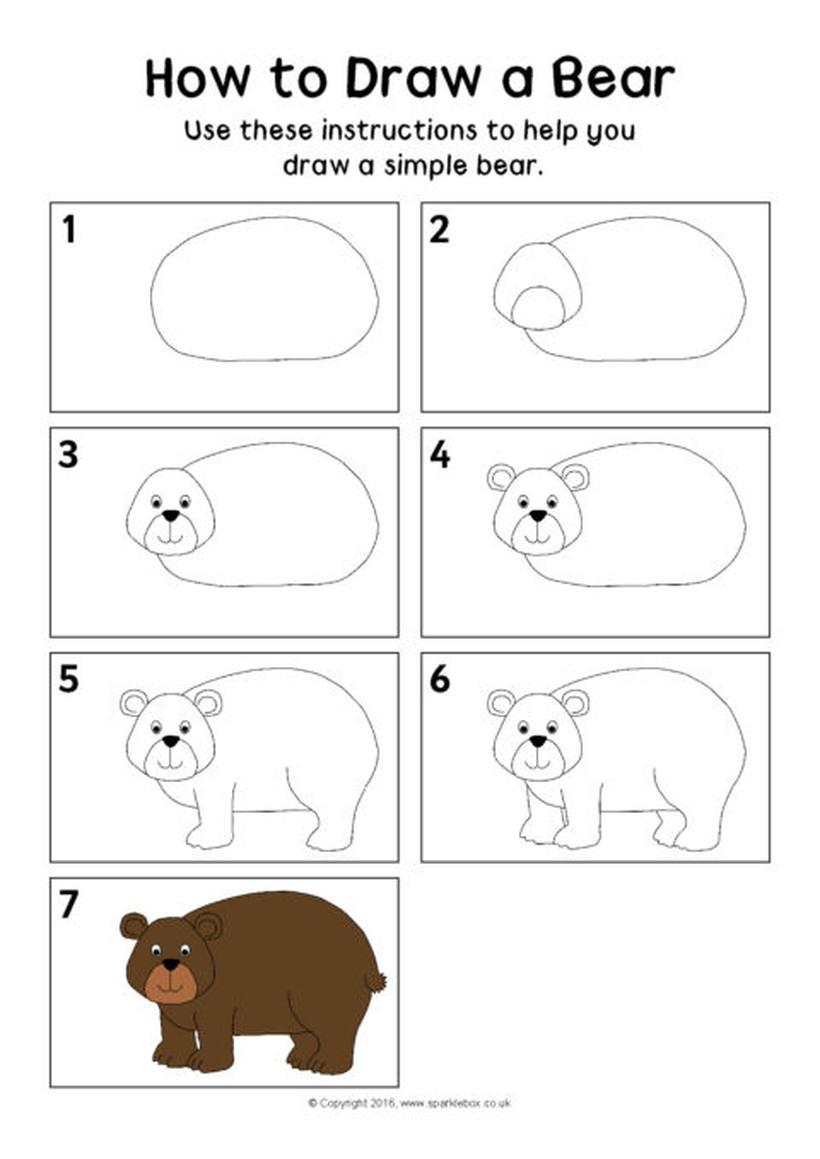 oso osos dibujos faciles 1