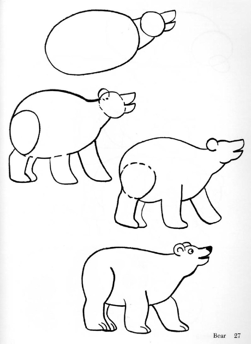 oso osos dibujos faciles