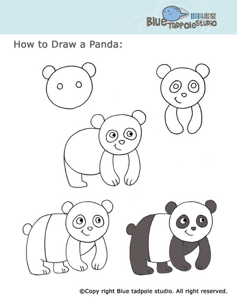 oso panda simple osos dibujos faciles para copiar gratis