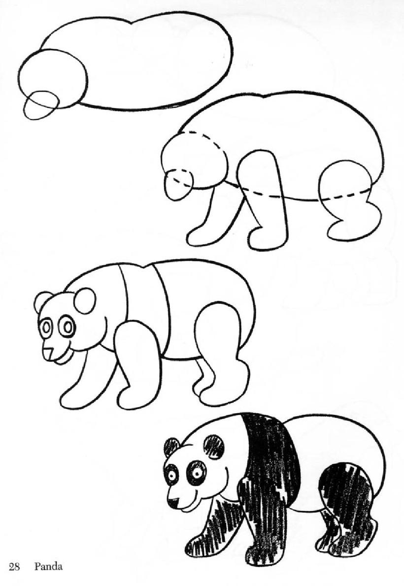 oso osos pandas dibujos faciles con instrucciones