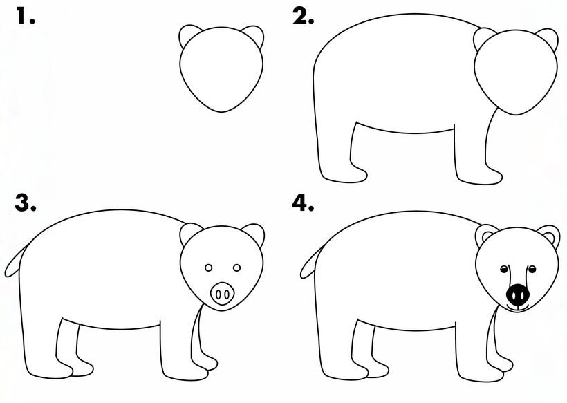 oso osos polares dibujos faciles guía paso por paso