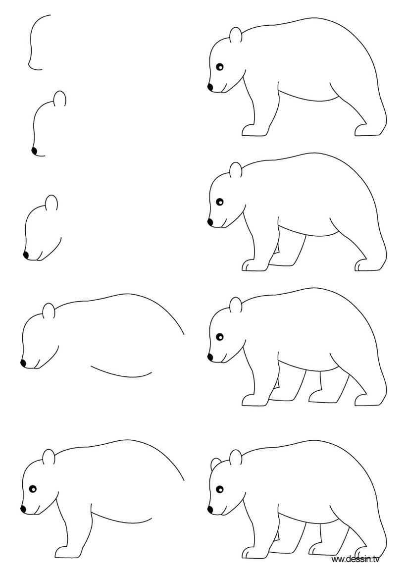 oso polar osos dibujos faciles a lápiz gratis para imprimir