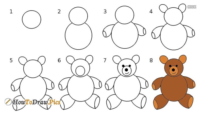 oso osos dibujos faciles 8