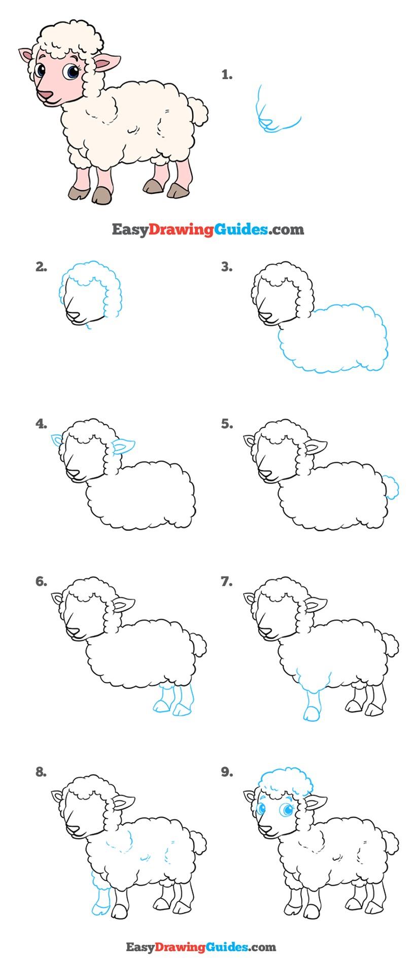 oveja dibujos fáciles de animales para hacer a lápiz con niños paso a paso