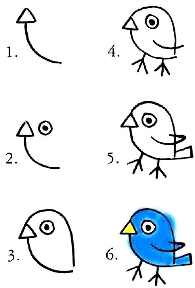 pajarito dibujos fáciles de pájaro aves paso a paso a lápiz colorear niños