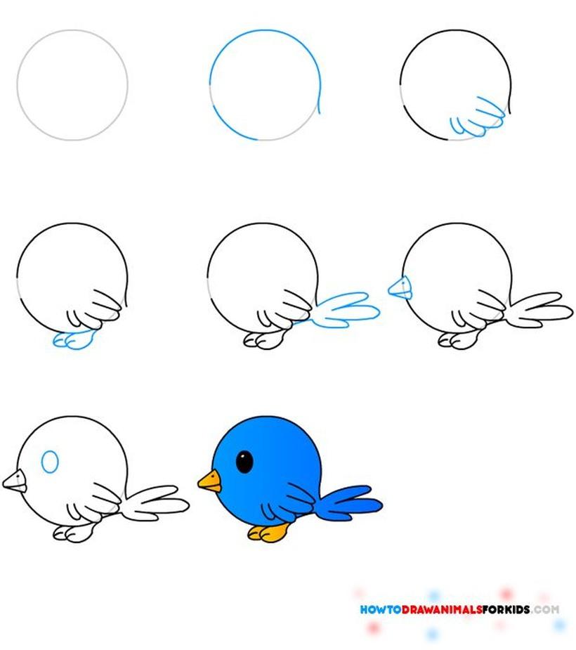 pajarito dibujos fáciles de pájaro aves paso a paso a lápiz colorear celeste
