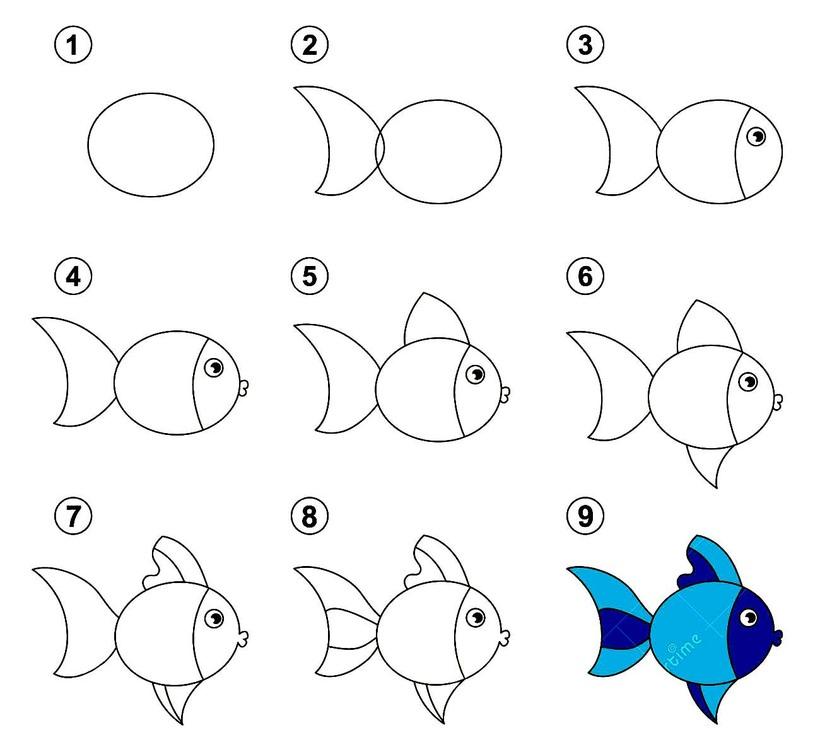 peces pez dibujos fáciles de animal acuático para hacer a lápiz con niños paso a paso