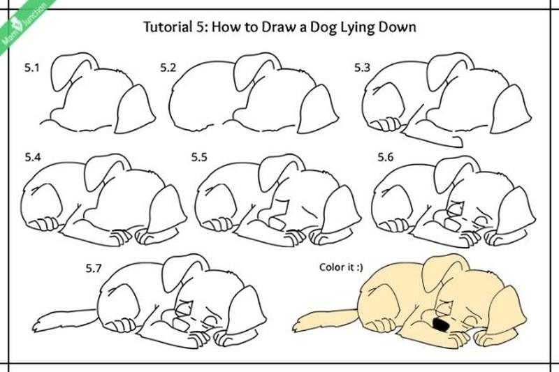 perros dibujo caricatura simple paso a paso perrito durmiendo para pintar