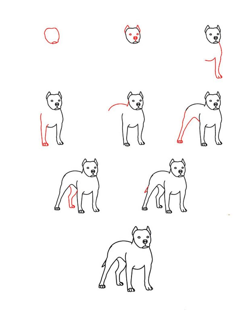 perros realistas dibujos fáciles paso a paso a lápiz