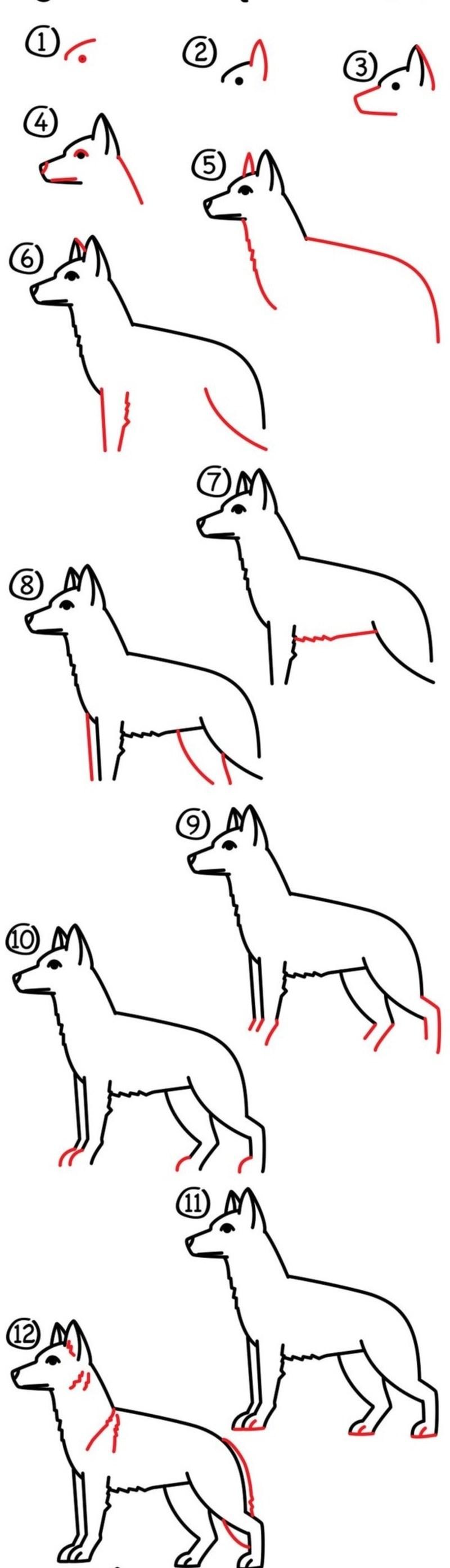 perros guardianes realistas dibujar paso a paso a lápiz